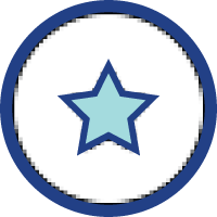 Icon White Star